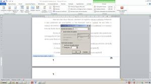 Numerando páginas no Word - Janela de edição da numeração